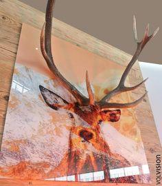 Die 18 besten Bilder von Hirschgeweih Deko | Deer Antlers, Deer und ...