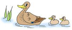 Lasten lintuviikon materiaalia, esim. pesinnän tunnusmerkit monisteella