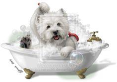 -Looks like my Winston taking a bath!