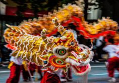 dragon parade - Google Search