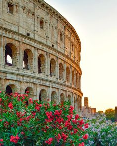 Stunning Instagrams of Rome by Dino Presciutti #inspiration #photography