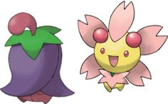 Cherrim Pokédex: stats, moves, evolution & locations | Pokémon Database