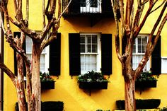 Bright Yellow House