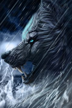 ☆ The Perfect Storm :¦: By WolfRoad ☆