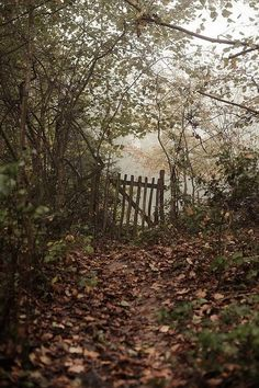 "Just imagine how many times this old worn gate has been opened after a walk down this path to a ""secret garden"". Magic Garden, Big Garden, Autumn Rain, Autumn Leaves, Photos Voyages, All Nature, Flowers Nature, Autumn Garden, Forest Garden"