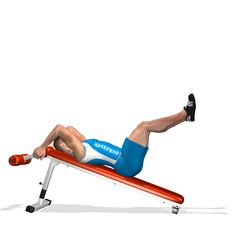The exercise involves the rectus abdominis and in particular the lower part of the muscle.