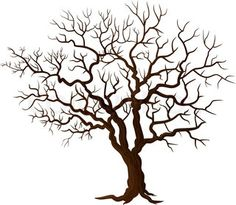 tree images without leaves - Google Search