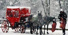 ABANT GÖLÜ-BOLU Holiday Pictures, Winter Pictures, 10 Picture, Winter Snow, Winter Wonderland, Travel Photos, Seasons, Christmas, Twitter