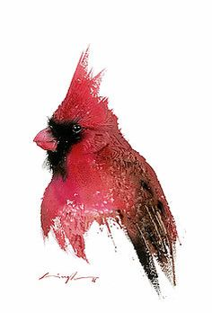 Red cardinal watercolor by Nitin Singh Watercolor Bird, Watercolor Artists, Watercolor Paintings, Watercolors, Portrait Wall, Thing 1, Christmas Drawing, Hanging Art, Bird Art