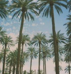 necesito vacaciones
