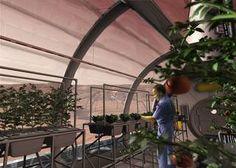An artist illustration of a Mars greenhouse.
