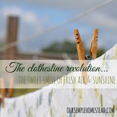 Sixty years ago it wasn't uncommon to see clothes line-drying in every back yard, but since 1940 when clothes dryers became available that nostalgia symbol has slowly died. Cleaning Recipes, Diy Cleaning Products, Natural Living, Simple Living, Revolution, Life Savers, Way Of Life, Farm Life, Simple Way