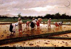 Women working in a rice field - Fabian De La Rosa