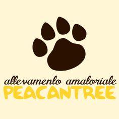 http://www.peacantree.com/