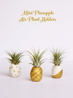 Mini pineapple air plant holders DIY Mini Pineapple Air Plant Holders You'll need White polymer clay Bamboo skewer Air plants (Tillandsia 'Ionatha') Gold paint Plant Crafts, Deco Nature, Diy Inspiration, Deco Floral, Air Dry Clay, Diy Clay, Plant Holders, Clay Projects, Clay Creations
