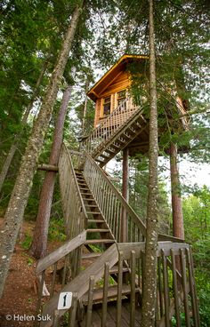 Awaken your inner child by sleeping in a tree house at Parc Aventures Cap Jaseux in Quebec, a unique ecotourism adventure centre.