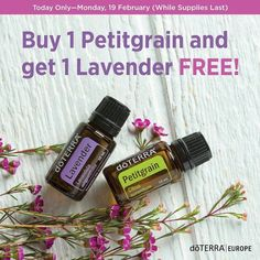 "Petitgrain, AKA ""the man's lavender"" delivers calming and relaxing benefits to ease feelings of tension and stress. Doterra Essential Oils, Lavender, Perfume Bottles, Calming, February, Stress, Feelings, Image, Perfume Bottle"