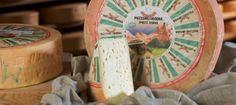 I prodotti tipici #trentini sono veramente tanti e oggi assaggeremo il Puzzone di Moena prodotto nelle Valli di #Fiemme e #Fassa. Quanti di voi sanno come viene chiamato in lingua ladina questo #formaggio?  #prodottitipici #formaggi #degusta #visittrentino Ph credits: puzzonedimoena.com