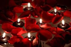 Newest Snap Shots Floating Candles xmas Thoughts Sailing along with can offer the actual component of romantic endeavors, style and magnificence if t Hanging Candles, Floating Candles, Red Rose Petals, Red Roses, Photo Candles, Rose Candle, Types Of Yarn, Celebrity Weddings, Xmas