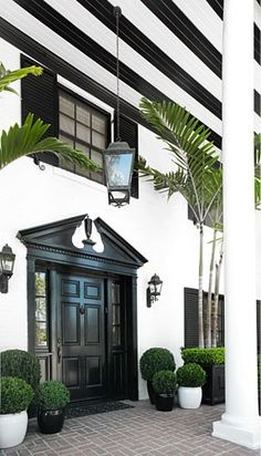 Crisp black and white entry - pediment, shutters, beams and lighting mixed with palms and potted boxwoods