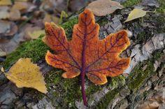Купить Валяная войлочная брошь Кленовый лист, краски осени. - рыжий, коричневый, кленовый лист