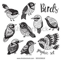 Collection of cute tropical decorative birds. Black and white vector illustration. Stylized birds design