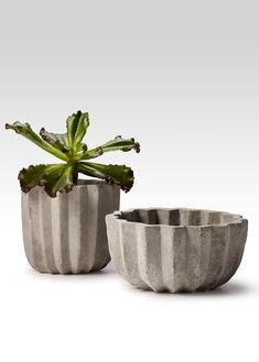 Cement Pleated Pots