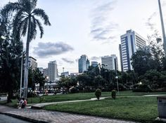 Joli parc de Bangkok et son lac des cygnes 🌸🌿 #takemeback #lumphiniparc #bangkok