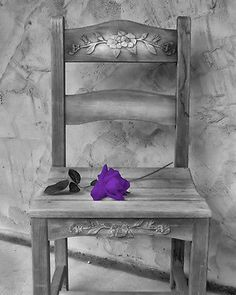 Black White Purple Rose on Chair Photography Wall Art Matted Picture | eBay
