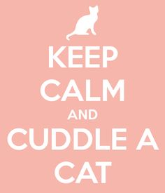 I think I am going to do that right now...I wonder if I can get a three cat cuddle at the same time LOL
