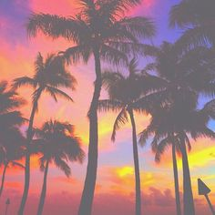 Love the sky