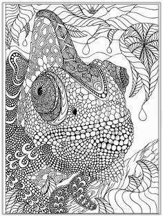 Free Coloring Pages For Adults Printable Iguana Adult Coloring ...