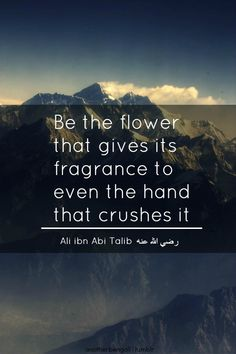 Best Quotes from Imam Hazrat Ali & Sayings In English Islamic Quotes, Islamic Inspirational Quotes, Muslim Quotes, Religious Quotes, Islamic Teachings, Quran Verses, Quran Quotes, Forgiveness Quotes, Hindi Quotes