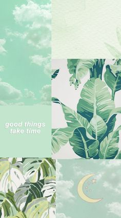 Simple Aesthetic, Aesthetic Collage, Aesthetic Anime, Purple Wallpaper Iphone, Green Wallpaper, Aesthetic Pastel Wallpaper, Aesthetic Wallpapers, Skateboard Pictures, Simple Wallpapers