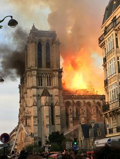Rebuilding Paris' iconic Notre Dame cathedral could be nearly impossible if France wishes to replace the oak timbers destroyed in the devastating fire last week. Flatiron Building, Ville France, Chapelle, Kirchen, Photos, Pictures, Art History, Beautiful Places, Places To Visit