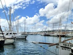 Moje zkušenost s Mallorkou - Itchy Feet Diary Palmas, Majorca