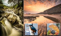 TRUSTWORTHY: Stunning photos of British countryside shortlisted for competition