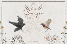 Ad: Stranger Forest Collection by Julia Dreams on Watercolor Illustrations - Stranger Forest Collection Mystic and Magic, Bird and Botanical, Orangery and Forest - all these elements are the Watercolor Illustration, Graphic Illustration, Illustrations, Pattern Illustration, Flyer Printing, Custom Flyers, Watercolor Wedding Invitations, Clip Art, Hand Painted