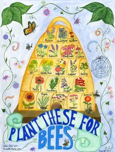 Bee Skep Poster for flowers to plant to attract bees- front bee/butterfly garden. Bee Skep, Terrarium Diy, Terrarium Wedding, Glass Terrarium, Bee Happy, Save The Bees, Bees Knees, Garden Planning, Garden Projects