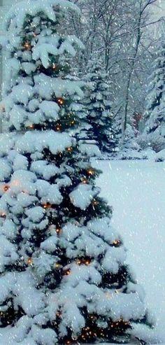 #fairy lights and snow...