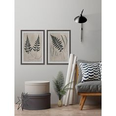 """Marmont Hill 2-Piece Vintage Fern Study 24"""" X 18"""" Framed Wall Art Set Multi - This Vintage Fern Study Framed Wall Art from the Marmont Hill Art Collective features a set of two framed prints that showcase vintage fern plants that can add softness to your home. This piece comes with 2 D-rings on the back making it ready to hang. Plant Wall Decor, Wall Collage Decor, Wall Decor Set, Wall Art Sets, Frames On Wall, Framed Wall Art, Framed Prints, Bungalow Decor, Wall Decor Pictures"""