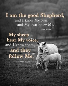 As the good Shepherd, the Lord is leading, guiding, and directing us in the divine life. Inwardly we have Him as our Shepherd, a Shepherd of life and in life—John 10:14, 27-30, 10.