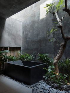 World Architecture Festival, Bali Architecture, Concrete Architecture, Stamped Concrete, Concrete Walls, Concrete Design, Wooden Screen, Tadelakt, Ground Floor Plan