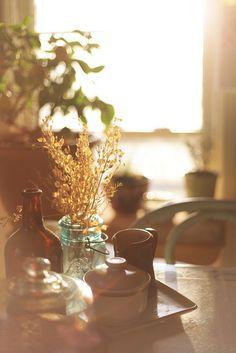 soft and lovely morning light