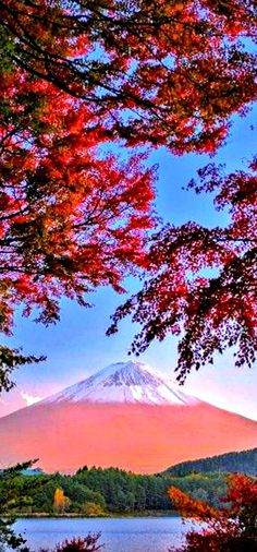 (Mount Fuji in Autumn / Japan) * * ISN'T IT STUPENDOUS? MT. FUJI IS JUST ABOUT THE MOST REVERED MOUNTAIN IN JAPAN.