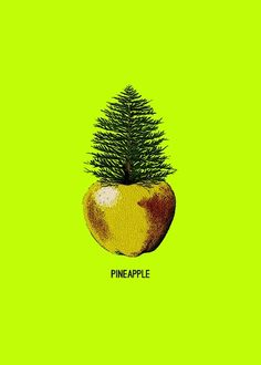 PineApple Art Print Great play on words Pinapple Art, Pinapple Decor, Pine Apple, Happy Images, Pineapple Express, Apple Prints, Sun Art, Pine Tree, Cute Quotes