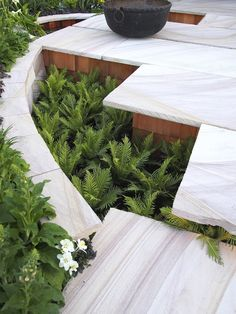 Show gardens at Sydney Garden Show   GardenDrum Charlie Albone 'See What's Possible' Silver medal