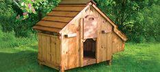 Lenham Hühnerstall der Firma Forsham Cottage Arks | Hühnerzucht | Omlet