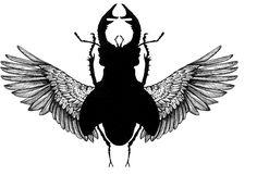 AngelBeetle