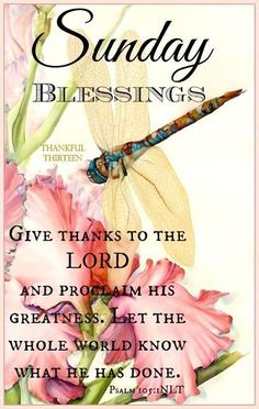 Have A Blessed Sunday Everyone Quotes T